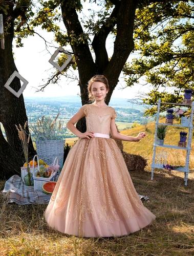 Платье для девочки Жоржетта Д-486